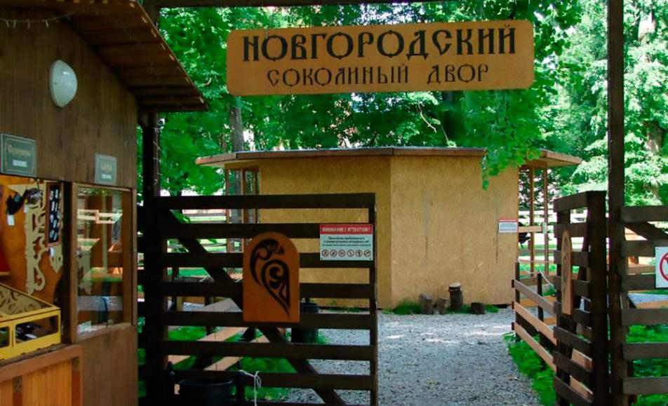 Новгородский соколиный двор