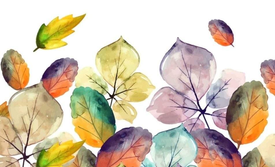 Осень, до свидания